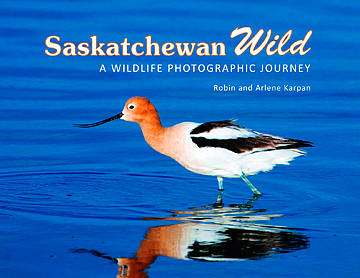 Saskatchewan Wild book cover